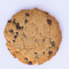 paleo mama bakery chocolate chip